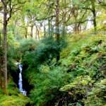 Wodospad, Glendalough
