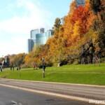 Miasteczko Niagara